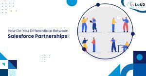 Differentiate Between Salesforce Partnerships